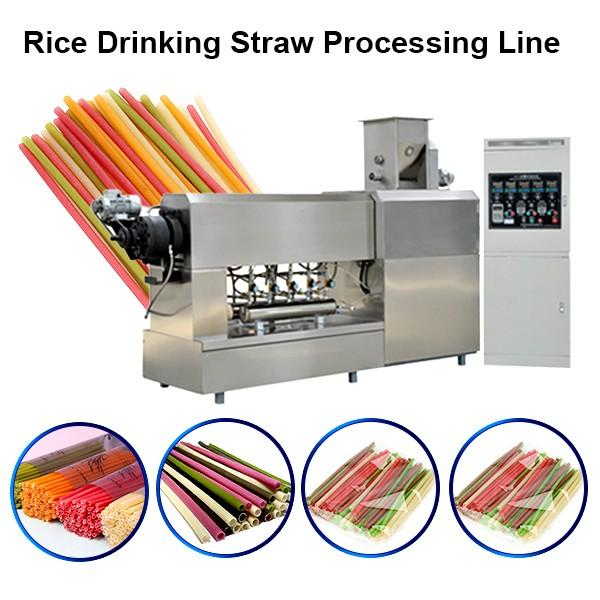 2019 Stainless Steel Factory Price Italy Noodles Making Machine / Pasta Straw Machine