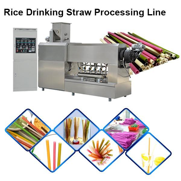Single Screw Extruder Macaroni Pasta Degradable Drinking Straw Processing Line Making Machine
