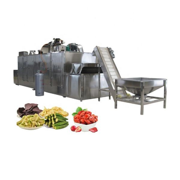 Turnkey Preserved Fruit and Vegetable Processing Line Candied Fruit Production Plant Dried Fruit and Vegetable Project Candied Preserved Fruit Processing Line